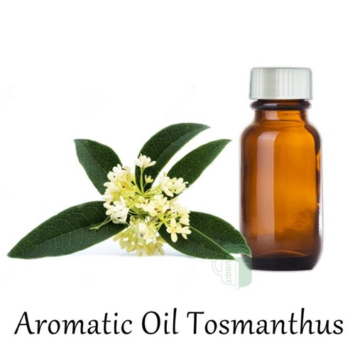 aromatic_oil_tosmanthus